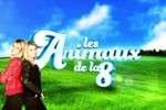 Les animaux de la 8 - Paris, capitale animale